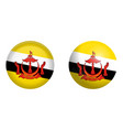 flag under 3d dome button and on glossy sphere vector image vector image