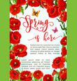 greeting poster of spring poppy flowers vector image vector image
