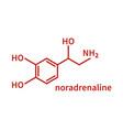 noradrenaline milecule in line vector image vector image