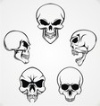 Skulls Collection vector image vector image