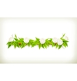 Flowers banner vector image