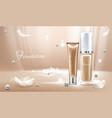 3d realistic concealer with pearls vector image vector image