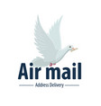 dove bird air post mail delivery icon vector image vector image