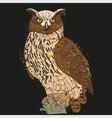 long-eared owl night vector image