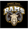 Rams logo for a sport team vector image