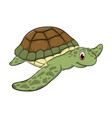 turtle cartoon drawing vector image