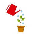 plant growth leafs icon vector image