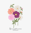 colorful peonies bouquet spring flowers vector image vector image