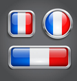 France flag buttons vector image