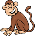 funny monkey cartoon vector image vector image