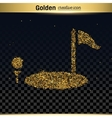 Gold glitter icon vector image vector image