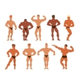 Mens physics bodybuilders vector image vector image