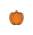 pumpkin handdrawn design template isolated vector image vector image