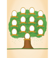 genealogy tree vector image