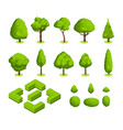 isometric 3d park and garden trees and vector image