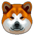 pixel akita inu dog portrait isolated vector image