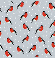 seamless background with bullfinches vector image vector image