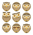 set of owls isolated on white background flat vector image vector image