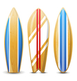 surfs with geometry vector image vector image