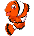 Adorable clown fish posing isolated vector image vector image