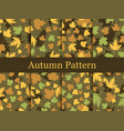 autumn leaves set of seamless patterns oak leaves vector image