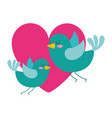 cute flying birds heart in love romance vector image vector image