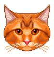 pixel red cat portrait detailed isolated vector image