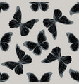 seamless pattern with hand drawn stylized morpho vector image vector image