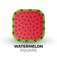 square watermelon vector image vector image