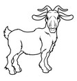 stylised goat vector image