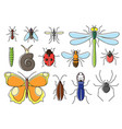 insects set in flat style line art bugs icon vector image