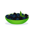 blackberries and blueberries green bowl organic vector image