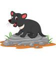 cartoon tasmanian devil on rock vector image vector image