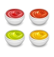 Different gourmet sauces mustard ketchup soy vector image vector image