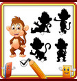 find the correct shadow cartoon funny baby monkey vector image vector image