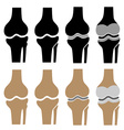 human knee joint symbols vector image vector image