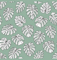 monstera leaves pattern vector image vector image