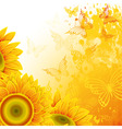 orange background with sunflowers and butterfliesc vector image
