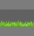 real green grass on transparent background vector image vector image