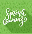 spring cleaning hand drawn lettering in green vector image
