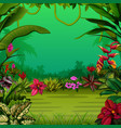 exotic forest with the trees and the flowers vector image vector image