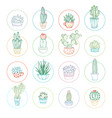 linear cacti and succulent icon set vector image vector image