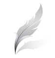 silver feather vector image vector image