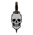 skull pierced with dagger vintage template vector image vector image