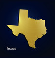 texas map gold texture on blue background vector image