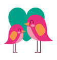beauty birds lovely heart love decoration vector image