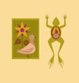 flat icon on stylish background biology frog bird vector image vector image