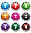 fresh beetroot set 9 collection vector image vector image