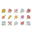 wild flowers color icons set spring blossom vector image vector image