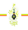 cannabis vipe bong vector image vector image